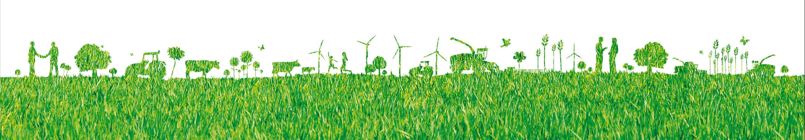 La fili re bois s anime au salon aux champs bois energie for Salon aux champs