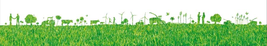 Frise salon aux champs 2011 bois energie en normandie for Salon aux champs